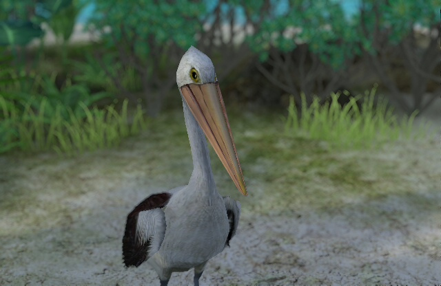 Endless Ocean 2: Adventures of the Deep Screenshot