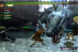 Monster Hunter 3 (Tri~) Screenshot