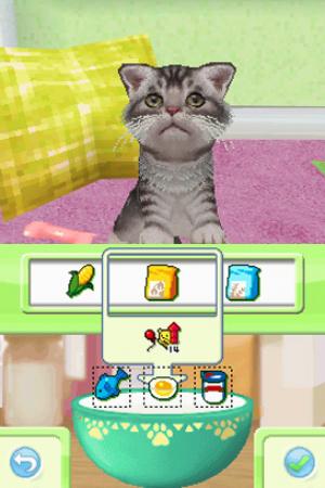 Petz Kittens Review - Screenshot 3 of 4