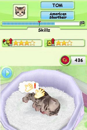 Petz Kittens Review - Screenshot 2 of 4