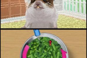 Petz Hamsterz Family Screenshot