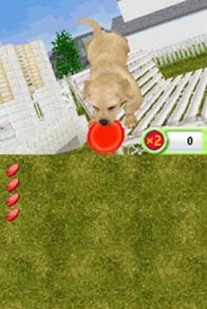 Petz Dogz Family Review - Screenshot 3 of 3