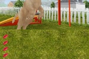 Petz Dogz Family Screenshot