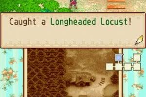 Harvest Moon DS: Grand Bazaar Screenshot