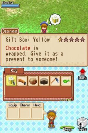 Harvest Moon DS: Grand Bazaar Review - Screenshot 2 of 4