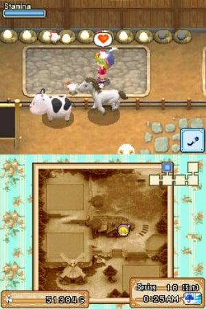 Harvest Moon DS: Grand Bazaar Review - Screenshot 3 of 4