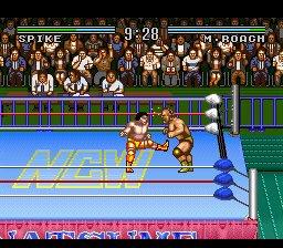 Natsume Championship Wrestling Screenshot