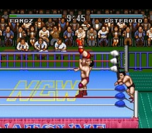 Natsume Championship Wrestling Review - Screenshot 4 of 4