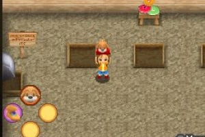 Harvest Moon DS: Sunshine Islands Screenshot