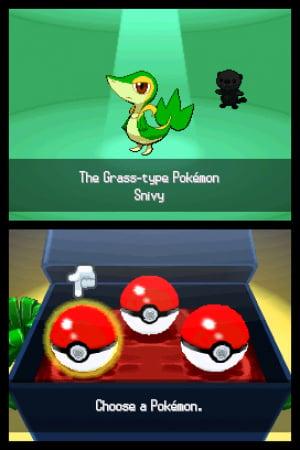 Pokémon Black and White Review - Screenshot 4 of 4