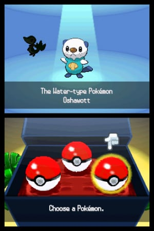 Pokémon Black and White Review - Screenshot 1 of 4