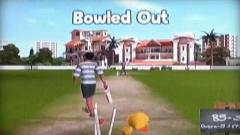 Cricket Challenge Screenshot