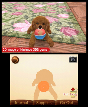 Nintendogs + Cats Review - Screenshot 6 of 6