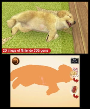 Nintendogs + Cats Review - Screenshot 6 of 6