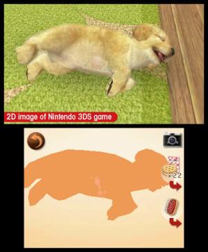 Nintendogs + Cats Review - Screenshot 1 of 6