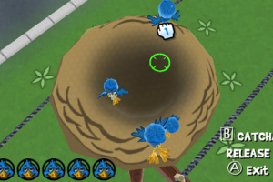 Play with Birds Screenshot