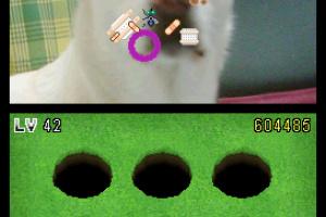 Whack-A-Friend Screenshot