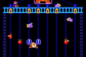 Donkey Kong Jr. Screenshot
