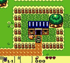 The Legend of Zelda: Link's Awakening DX Review - Screenshot 1 of 4