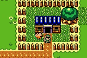 The Legend of Zelda: Link's Awakening DX Screenshot