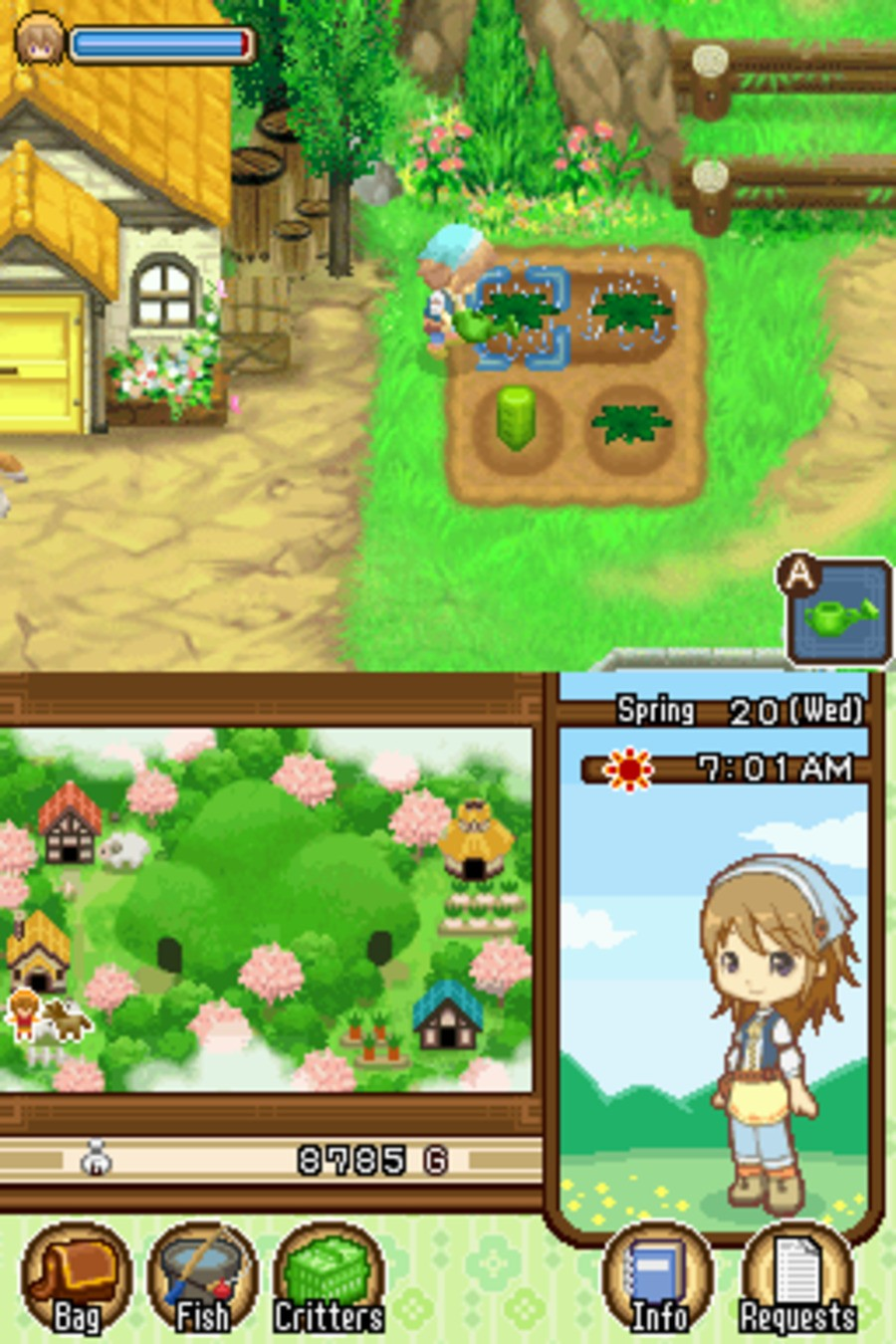 Harvest Moon DS: The Tale of Two Towns Screenshot