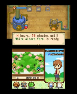 Harvest Moon 3D: The Tale of Two Towns Review - Screenshot 2 of 3
