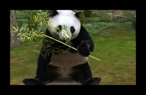 Zoo Resort 3D Review - Screenshot 2 of 4