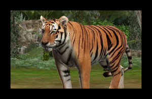 Zoo Resort 3D Review - Screenshot 1 of 4