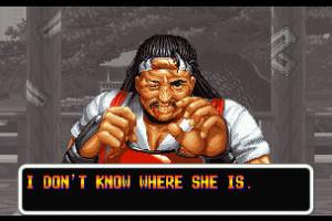 Art Of Fighting Screenshot