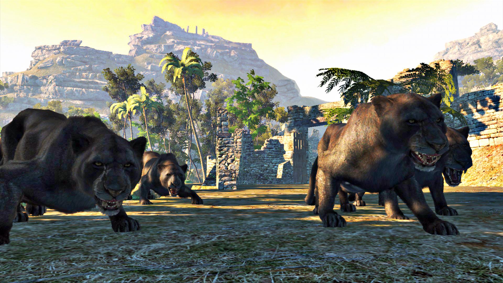 Afrikanske safari jakt pakker for storvilt og farlig spill