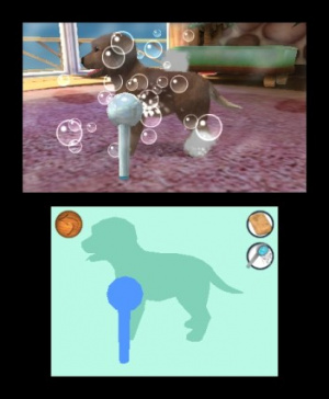 Pets Resort 3D Review - Screenshot 3 of 4