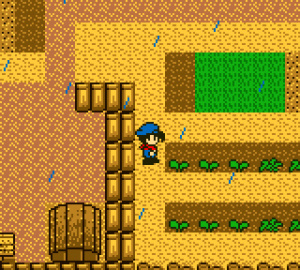 Harvest Moon Review - Screenshot 1 of 4