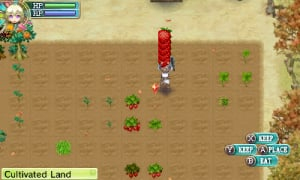 Rune Factory 4 Review - Screenshot 8 of 9
