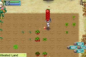 Rune Factory 4 Screenshot