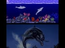 3D Ecco The Dolphin Screenshot
