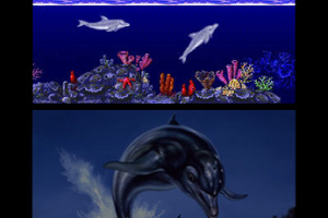3D Ecco The Dolphin Screenshot
