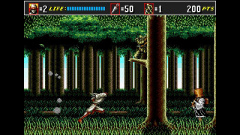 3D Shinobi III: Return of the Ninja Master Screenshot