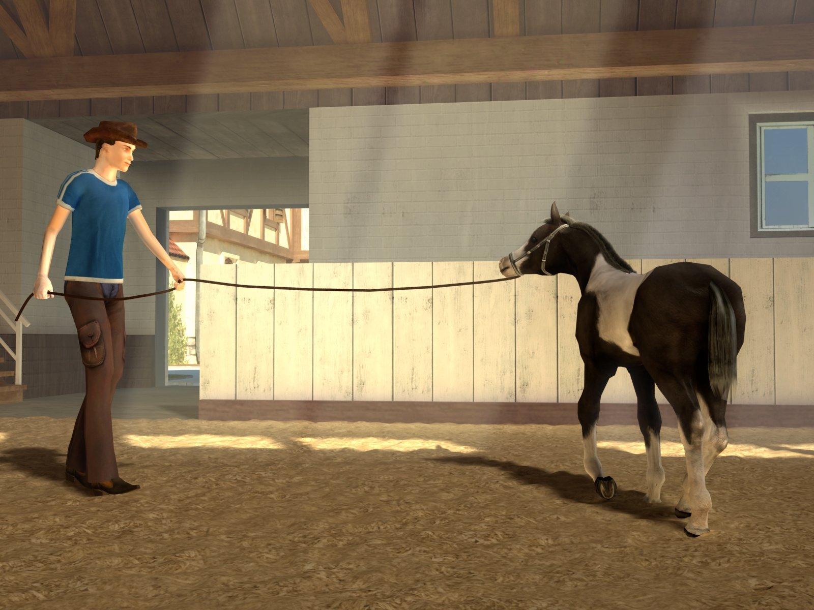 Pferdespiele 3d