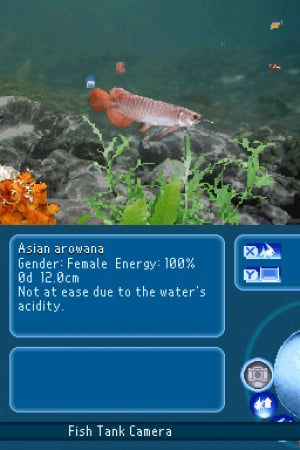 My Aquarium: Seven Oceans Review - Screenshot 2 of 3