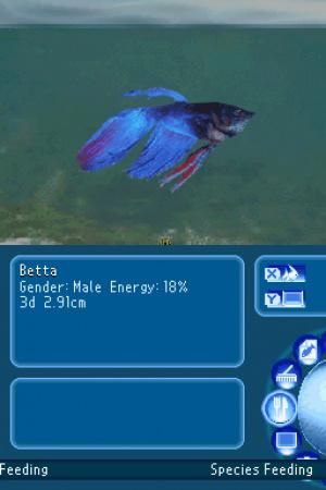 My Aquarium: Seven Oceans Review - Screenshot 1 of 3