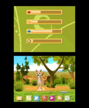 Outback Pet Rescue 3D Review - Screenshot 3 of 3