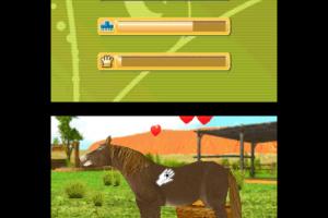 Outback Pet Rescue 3D Screenshot