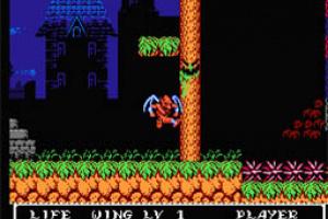 Gargoyle's Quest II: The Demon Darkness Screenshot