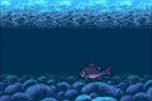 Legend of the River King 2 Screenshot
