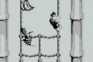 Donkey Kong Land Screenshot