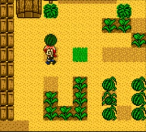 Harvest Moon 2 Review - Screenshot 3 of 4