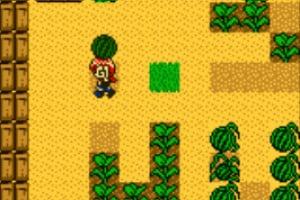 Harvest Moon 2 Screenshot