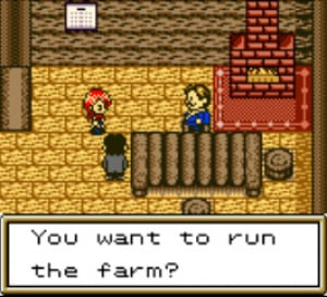 Harvest Moon 2 Review - Screenshot 1 of 4