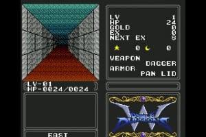 Double Dungeons Screenshot
