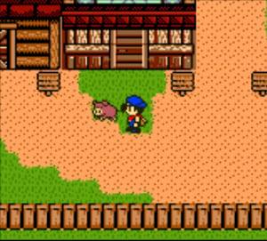 Harvest Moon 3 Review - Screenshot 1 of 3